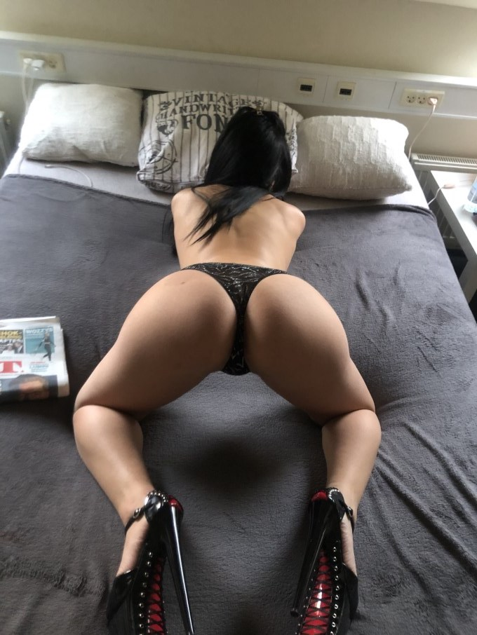 *New Sofia*First time*best price*100%real image 20470